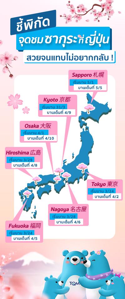 ชมซากุระที่ญี่ปุ่น