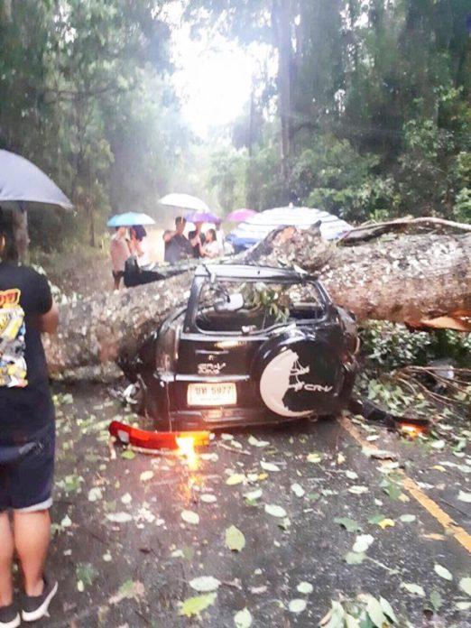 อุบัติเหตุหน้าฝน