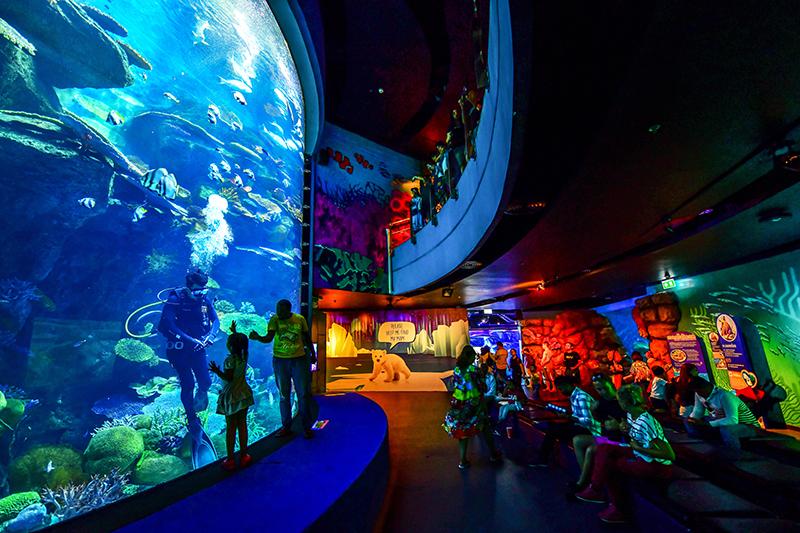 ที่เที่ยววันเด็ก Ocean World
