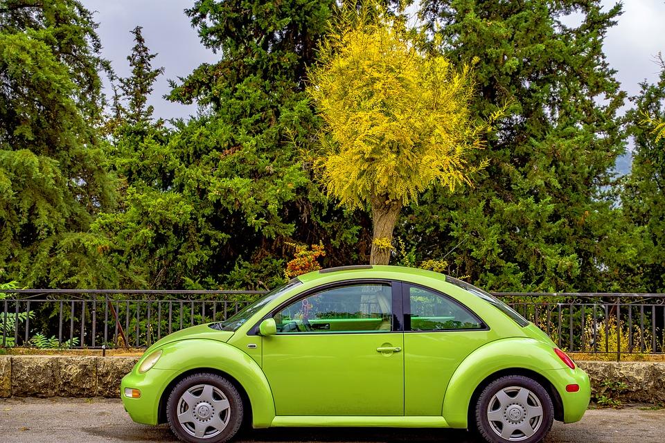 ต้นไม้โค่นใส่รถประกันแบบไหนคุ้มครอง