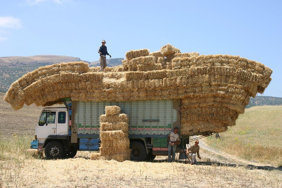 น้ำหนักของรถบรรทุก ที่สามารถขนบรรทุกของได้