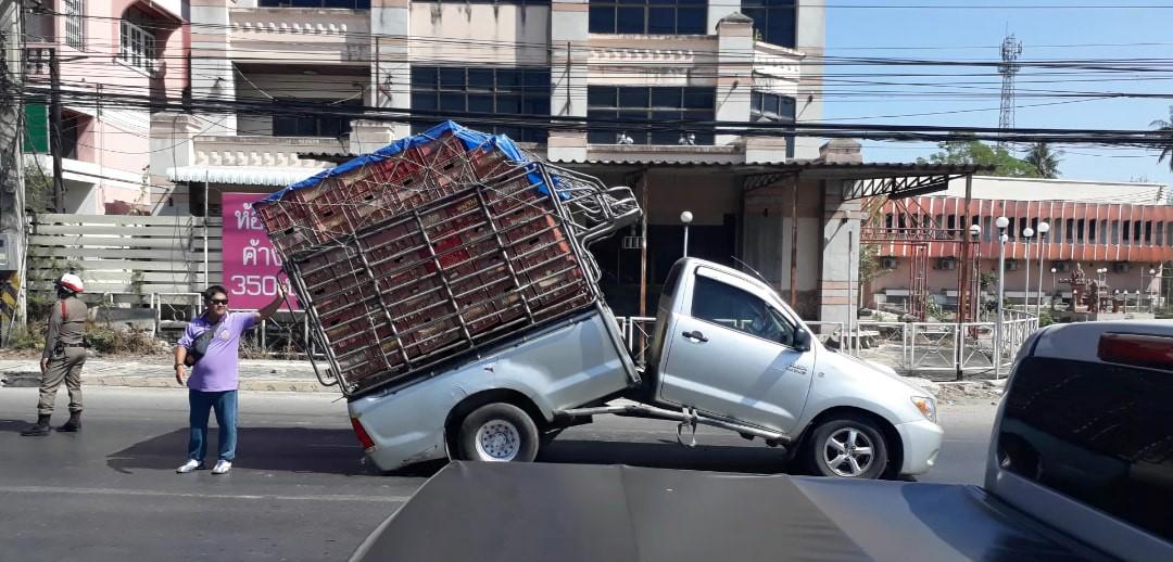 รถกระบะตอนเดียวหักครึ่งกลางถนน